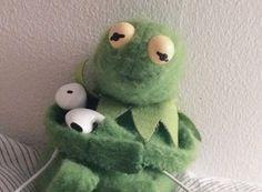 Funny Kermit Memes, Cute Memes, Fb Memes, Sapo Meme, Frog Meme, Kermit The Frog, Cute Frogs, Meme Faces, Stupid Memes