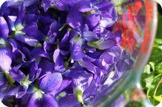 violet syrup, violet cooler, and violet lemonade from 5OrangePotatos