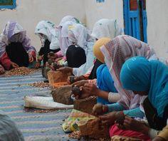 Africa: Berber women making Argan Oil, Morocco