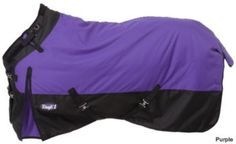 Horse blankets, love the purple!!