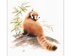 Red Panda  Original Watercolor Painting 9x12 by CMwatercolors