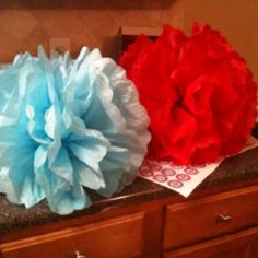 Red and Blue Pom pom's hanging from photo booth