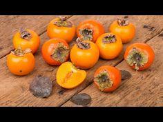 78# Le kaki, un pilier de votre autonomie alimentaire ! - YouTube Fruit Kaki, Photo Fruit, Kakis, Legume Bio, Fruit Recipes, Natural Wonders, Buffet, Orange, Yummy Food