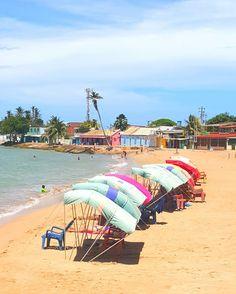 """Adícora es un pueblo que se encuentra costa noreste de la península de Paraguaná, en Venezuela, específicamente en el municipio Falcón y a 24 kilómetros al sur de la isla de #Aruba. Adícora quiere decir jajatal, hierba halófila de terrenos salobres. Esta voz indígena primitivamente era """"jadícuar"""", ha venido pasando por """"jatícora"""", por """"jadícora"""", por """"aríkula"""", hasta llegar hoy a Adícora. Es una playa poco profunda protegida por arrecifes, aguas frescas, con mayor oleaje que la zona…"""