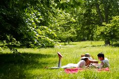 Take a romantic picnic to London's Royal Parks (Condé Nast Traveller)