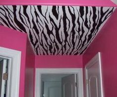 Hot pink & zebra idea for my restroom!  :)