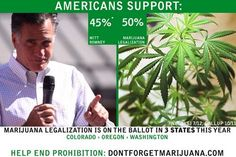 Marijuana Legalization Now More Popular than Mitt Romney