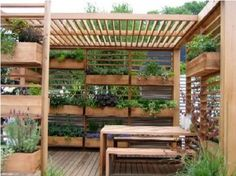 My uncle and aunt have been so creative in growing container gardens by repurposing many things...and their garden is one of the loveliest Ive seen. They had a couple sections that looked similar to this but were old metal shelving which could hardly be seen beneath the lush plants.