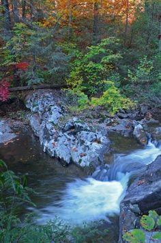 Citico Creek near the Cherohala Skyway