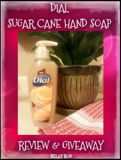 Enter to win a coupon for a free bottle of Dial Sugar Cane hand soap from Bella's Blog.   Good luck!