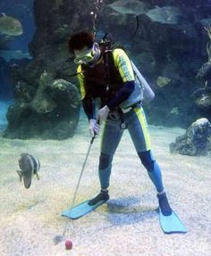 Underwater Golf Tournaments!!! #golf ♠ re-pinned by http://www.waterfront-properties.com/golfcoursehomes.php