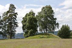 Burial mound at Veien kulturminnepark Archaeology, Country Roads, Museum, Museums