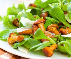 Pour une entrée rapide à préparer, nous vous proposons cette recette de salade de girolles. Un excellent moyen de démarrer un déjeuner.