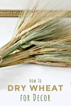 Love wheat stalk decor? I do as well, but paying for dried wheat when I am surrounded by it bothered me. Let me show you how I collect and dry my own wheat stalks for Fall decorating and my Fall Home Decor. #cheapfalldecor #fallnaturaldecor #decoratingwithwheat #preservingwheat Diy Projects For Fall, Easy Fall Crafts, Fall Diy, Outdoor Projects, Fall Home Decor, Autumn Home, Wheat Decorations, Corn Stalks, Flower Arrangements Simple