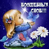 Доброй ночи !