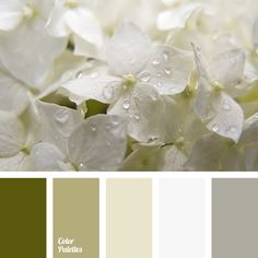 color matching, color palette, gray color, house paint colors, light gray, light olive, pastel green, shades of green, shades of olive, silver.