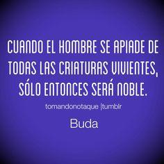 Frases con imagen Frases de ser humano -Buda