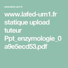 www.lafed-um1.fr statique upload tuteur Ppt_enzymologie_0a9e5ecd53.pdf