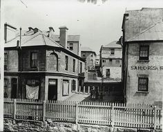 Cumberland Place,The Rocks, Sydney in Photo from Powerhouse Museum. Sydney City, Sydney Harbour Bridge, Great Photos, Old Photos, The Rocks Sydney, Scenery Photography, Historical Images, Historical Architecture, Continents