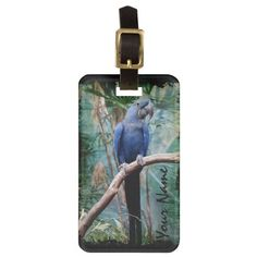 Shop Parrot 1 Luggage Tag Options created by Ronspassionfordesign. Custom Luggage Tags, Luggage Bags, Travel Style, Parrot, Make It Yourself, Personalised Luggage Tags, Parrot Bird, Personalized Luggage Tags, Parrots