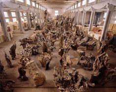 ai weiwei œuvre | ArtPlastoc: 391-LE VÉGÉTAL, L'ANIMAL ET L'HUMAIN DANS LES ŒUVRES DE ...