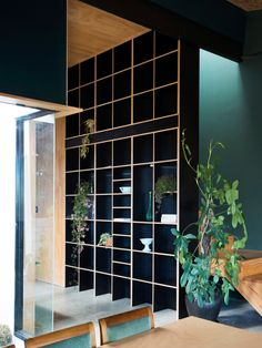 Open shelving for kitchen. Mickey Wolf and Steve Boyle and Family — The Design Files Hallway Shelving, Open Shelving, Interior Architecture, Interior And Exterior, The Design Files, Interiores Design, Built Ins, House Tours, Interior Inspiration