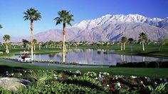 Palm-Springs-Park