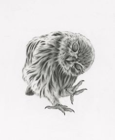 Dancing Owl Giclee print. All prints are professionally scanned and printed on archival quality paper with archival inks.  Your Giclee print will
