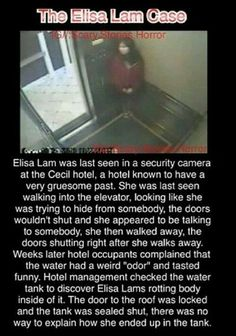 The mysterious disappearance of Elisa Lam. Scary Horror Stories, Short Creepy Stories, Paranormal Stories, Scary Stories To Tell, Spooky Stories, Joke Stories, Paranormal Photos, Short Stories, Wow Facts