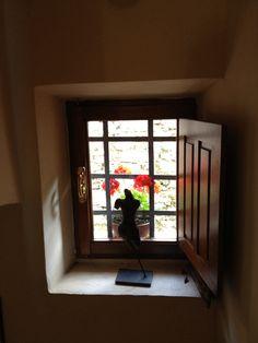 Staircase in our villa in Falcinello