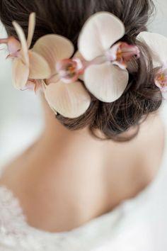 Orquídeas para el tocado de la novia http//www.miboda.tips
