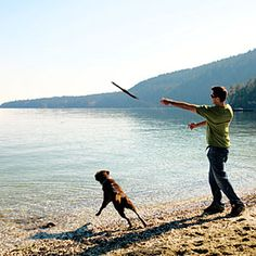 Leave your worries behind as you enjoy the beach and the local offerings Cool Places To Visit, Great Places, Places To Travel, Places To Go, Salt Spring Island Bc, Canada Travel, British Columbia, Pacific Northwest, Beach