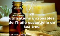 The essential oil of tea tree is the essential oil vapor of the Australian distilled plant Melaleuca alternifolia. Huile Tea Tree, Tea Tree Oil, Melaleuca, Tee Tree, Naturopathy, Spot Treatment, Oils For Skin, Health And Wellbeing, Hot Sauce Bottles