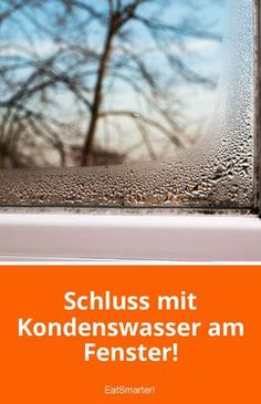 Terrific Absolutely Free 5 tips against condensation on the window! Popular Tiles are considered insensitive and easy to clean. It is therefore not without reason that they ar House Cleaning Tips, Cleaning Hacks, Birthday Gifts For Boyfriend Diy, Just Good Friends, Garden Types, Moisturizer For Dry Skin, Organize Your Life, Home Hacks, Good Advice