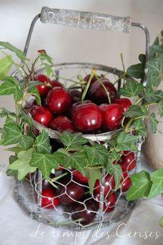 Fruit Jam, Red Fruit, Fruit And Veg, White Cherries, Sweet Cherries, Cherry Hill Park, Cherry Delight, Cherry Baby, Fruit Picture