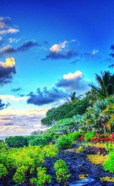 Shandrani Resort | Mauritius http://www.wpsubscribers.com/?hop=topogiyo http://www.desktoplightingfast/Zorro123 http://www.laptoptrainingcollege.com