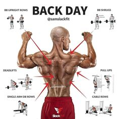 Back day. Credit:@samslackfit Follow @fitness_importance…