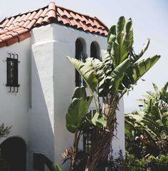 Palm perfection is Laguna Beach...