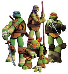 Teenage Mutant Ninja Turtles (TMNT) Leonardo, Donatello, Michaelangelo and Raphael.