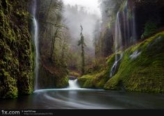 Waterfall in the Columbia River Gorge.