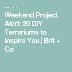 Weekend Project Alert: 20 DIY Terrariums to Inspire You   Brit + Co