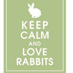 this is our life....why you ask? because we sell rabbit food at rabbitholehay.com, duhhhh;)