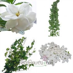 FiftyFlowers.com - DIY Wedding Flower Accent Box includes Gorgeous White Gardenia Flowers, delicate Stephanotis Buds and Wedding Ivy. Approx 13 stems plus filler/greenery $79.99 ($6.15 per stem) #centerpieceflowers