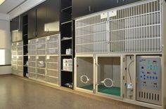 Hampden+Pet+Hospital+Kennels