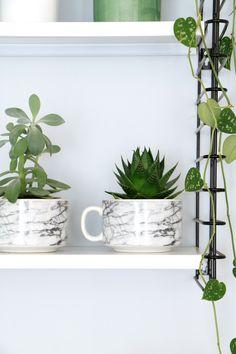 MY ATTIC SHOP / marble mugs / marmer / plants / greens www.entermyattic.com