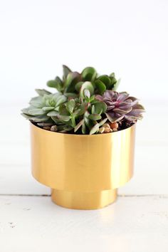 BRASS SUCCULENT PLANTER DIY