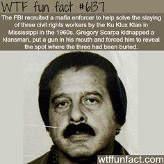 The FBI hired a mafia member - WTF fun facts