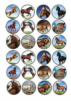 24 Icing Cupcake Cake Toppers Edible Mixed Images Horse Pony for sale online Bottle Cap Necklace, Bottle Cap Art, Bottle Cap Crafts, Bottle Cap Images, Cupcake Icing, Cupcake Cakes, Edible Photo Cake, Horse Cupcake, Edible Cake Toppers