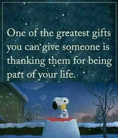 Peanuts Quotes, Snoopy Quotes, Snoopy Love, Snoopy And Woodstock, Thank You Snoopy, Happy Snoopy, Funny Thank You, Charlie Brown Quotes, Charlie Brown And Snoopy