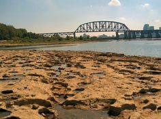 Falls of the Ohio fossil beds.